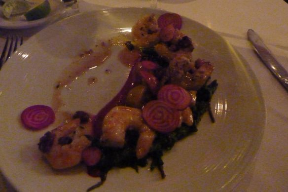 063 coquette shrimp