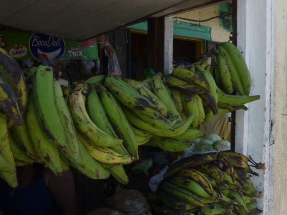 002 green bananas